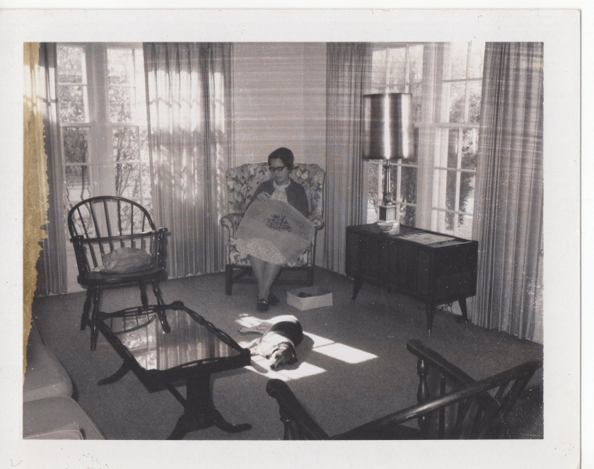 1969 - Mom working on what will become a needlepoint cushion for the dining chairs in Minnesota. The beagle is Pixie, and the cat in the chair is Caesar.