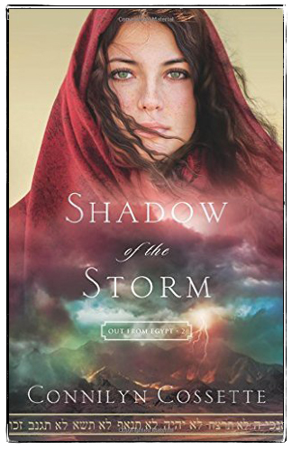 shadow-of-the-storm