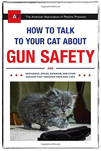 cat-gun-safety